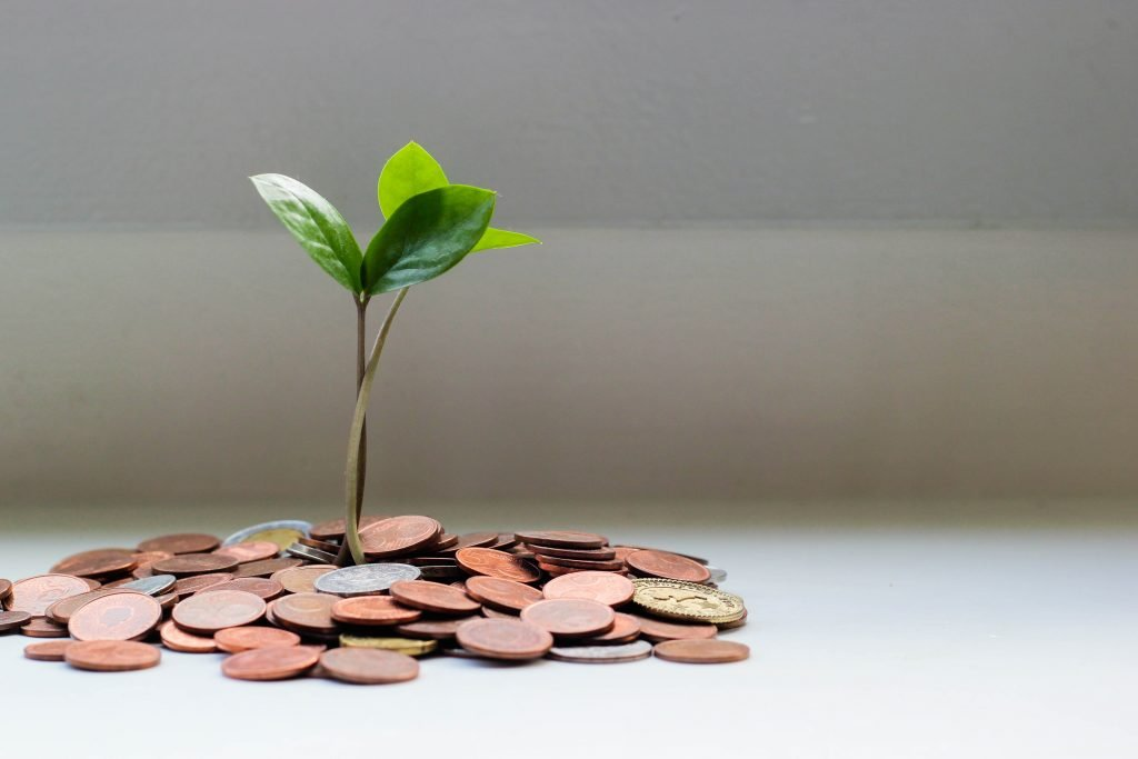 A pile of coins with a small sapling growing from it