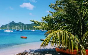 A photo of a beach in Grenada. The author's SMART goal plan